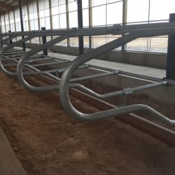 4-D multipurpose freestall dividers